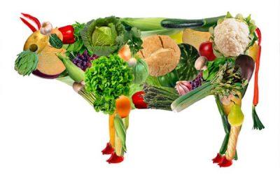 La ¿moda? de los embutidos vegetarianos divide a las empresas cárnicas